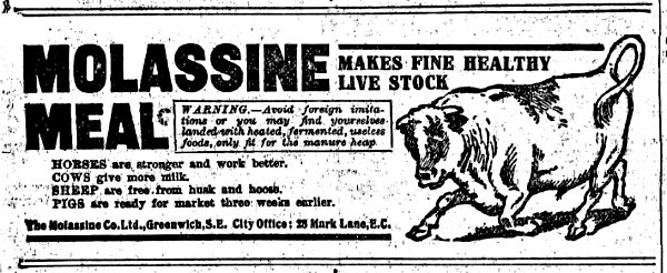 1911 Molassine Company Greenwich ad