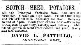 pattullo potato ad feb 1911